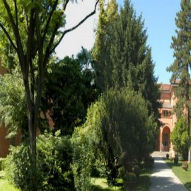 L'orto botanico di Bologna: un'oasi in mezzo al traffico