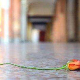 I luoghi romantici di Bologna